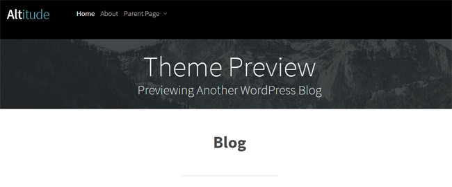 Theme Preview WordPress Blog
