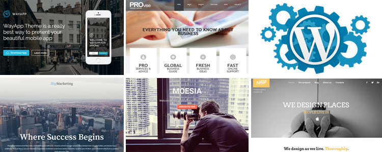 Free Parallax WordPress Themes