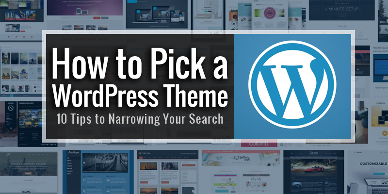 WordPress For Beginners: Picking The Right Theme For You